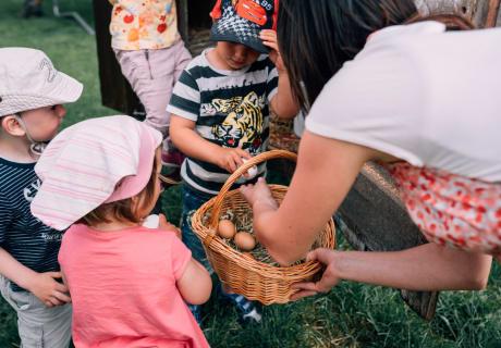 Ei aus dem Nest holen