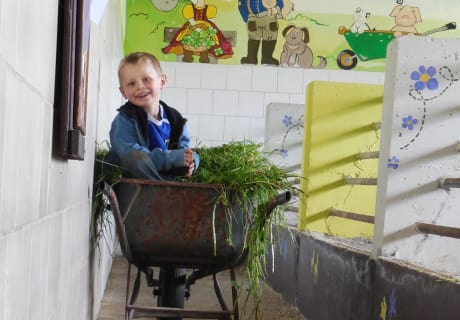 Kinderstall am Zittrauerhof