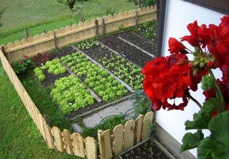 unser Hausgarten