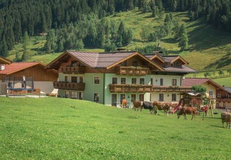 Haus und Hofansicht mit den weidenen Kühen
