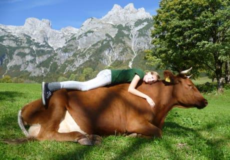 Pinzgauer als Liegestuhl