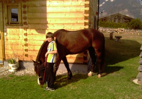 Unser Pferd Blacky
