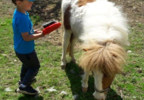 Robert mit dem Pony