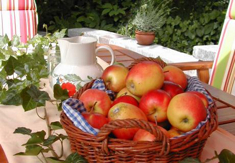 Äpfel vom Schwalbenhof