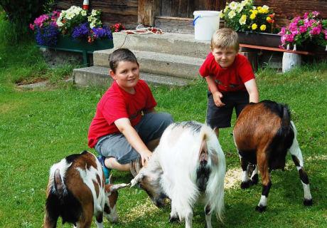 Kinder mit den Ziegen