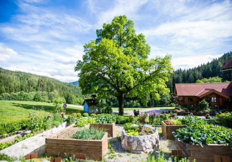 Garten mit Blick auf die Hofeiche