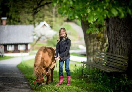 pony Wanderung
