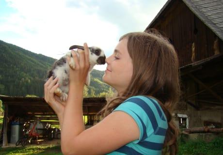 Die Kinder und die Tiere schließen schnell Freundschaft