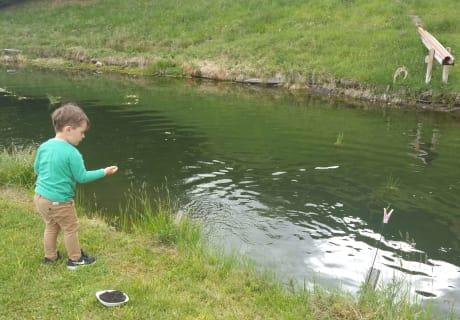 Fische Füttern am Marteshof