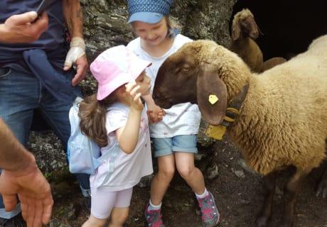 Wanderung mit Tiernaherlebnis