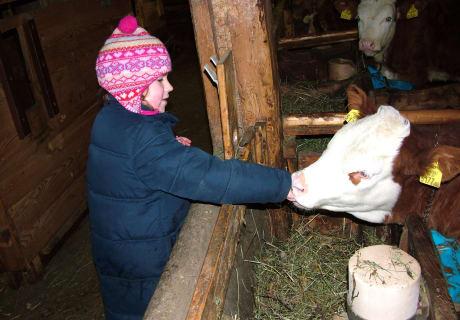 Tiere am Bauerhof