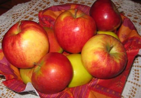 Sonnengereifte Osttiroler Äpfel