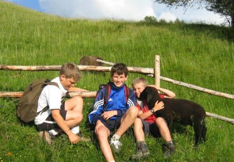Bei der Wanderung auf Schafe treffen