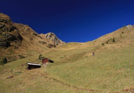 Villgrater Bergwiesen