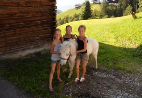 Pony Fany freut sich über Ausritte