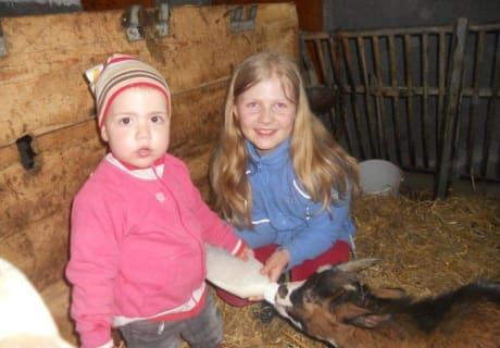 Die Ziege bekommt ihr Fläschchen am Hanserhof