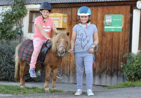 Pony Sissi wird ausgeführt