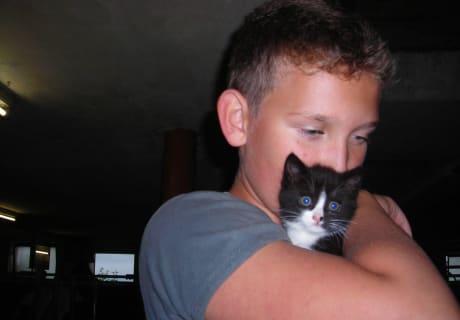 Gästekind mit Katze