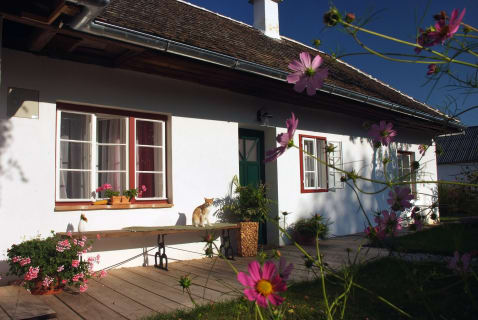 Holiday home with cat