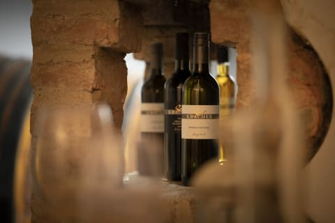 Im Weinkeller