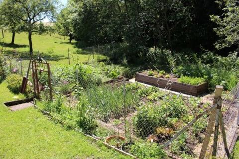 Bauerngarten im Frühling