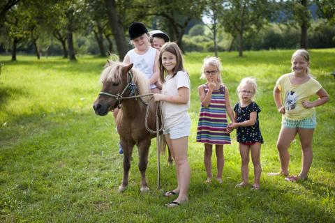 """Pony """"Xaverl"""" mit einer Mädels-Rasselbande"""