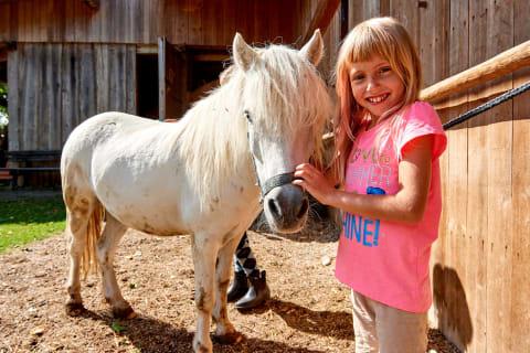 Streicheleinheit fürs Pony