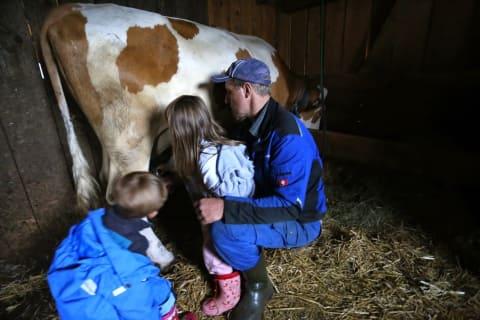 Melken mit dem Bauer