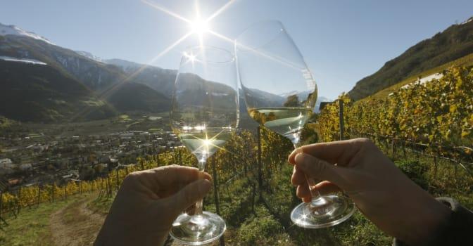 Gourmet-Herbst & Riesling