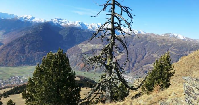 Herbstwanderwoche im Oktober - vom Gletscher bis zum Weinberg