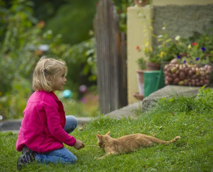 Kind+Katze