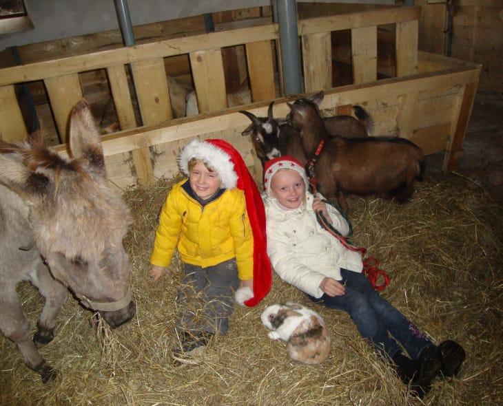 Weihnachten im Stall
