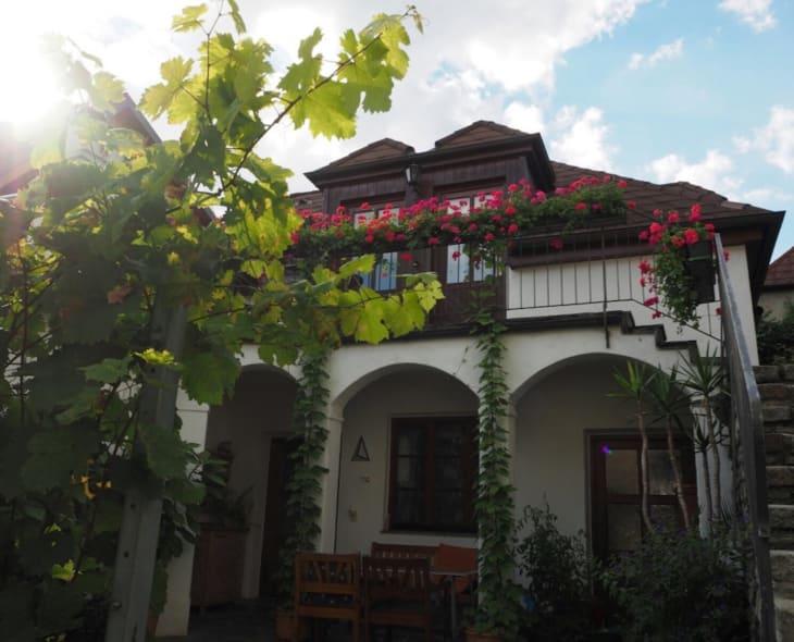 Gästehaus Schmelz - Außenansicht  Altbau (© Gästehaus Schmelz)