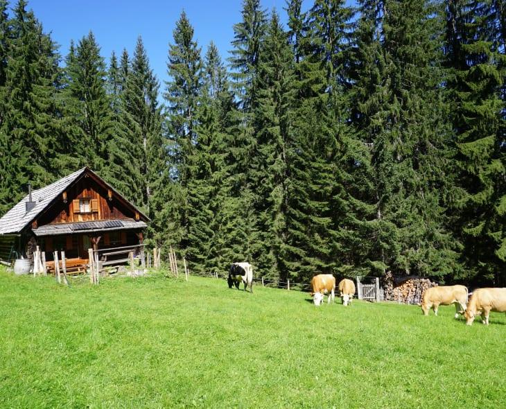 Schmiedsippl-Hütte