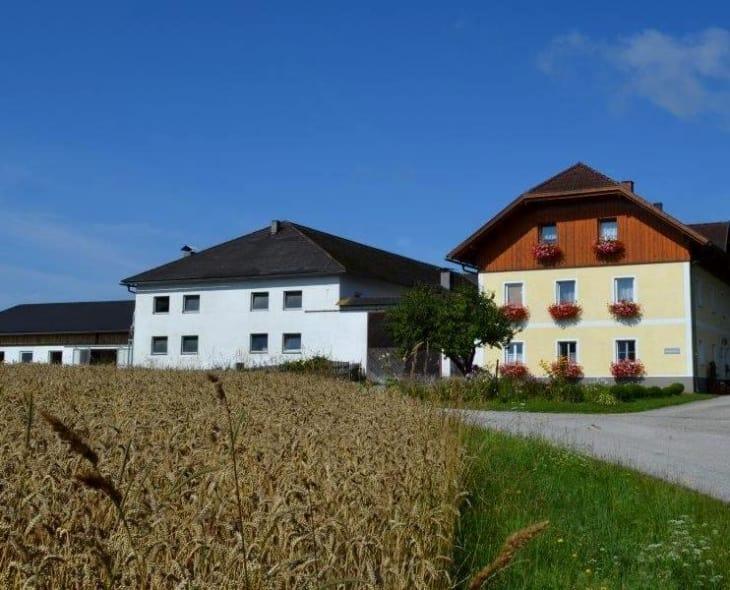 Obergrafenberger