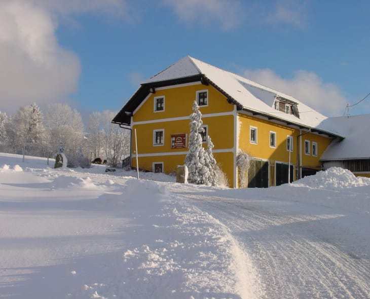 Lamahof im Winter