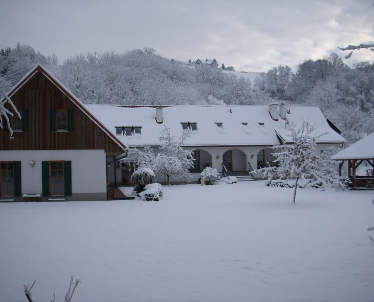 Winter am Kürbishof