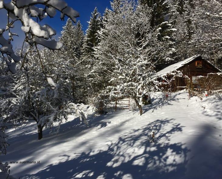 Kräutlhütte - Schattenspiele