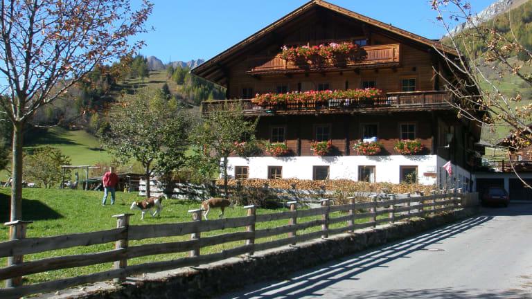 BIO-Bauernhof Redlerhof