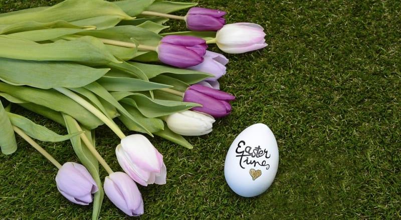 Pasqua - la primavera è arrivata