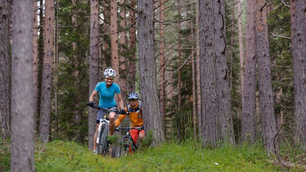 Dolomites Experience - MTB 3 days