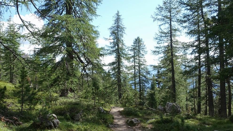 Hike & Discover Week