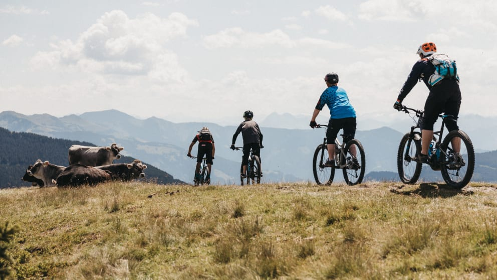 Signature Trail Package mit Halbpension