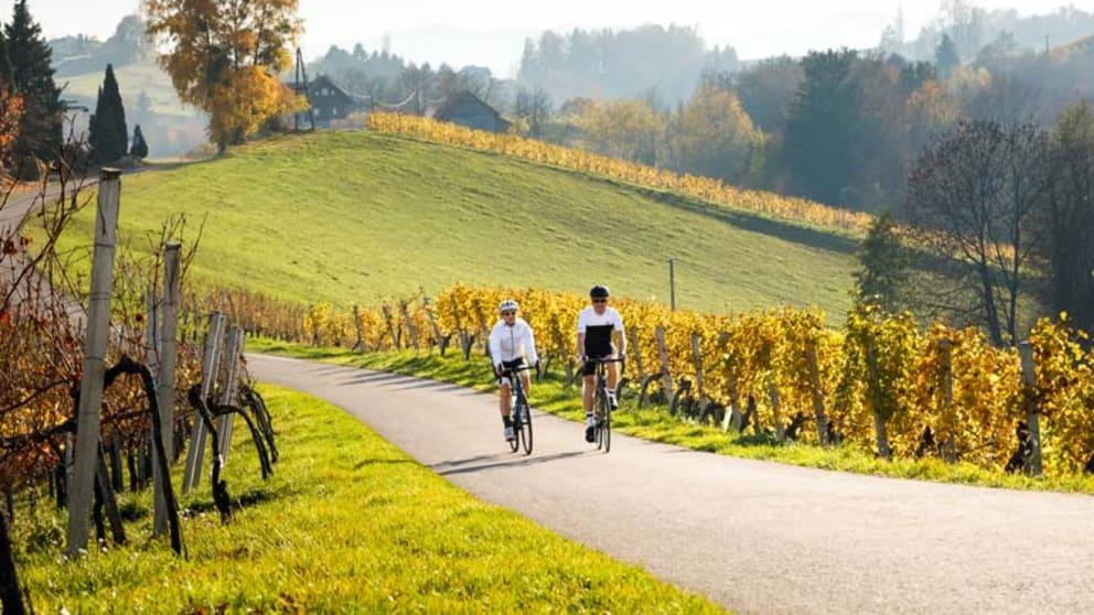 Weinlandhof-Roadbike-Wochenzuckerl