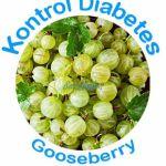 Gooseberry Mengontrol diabetes