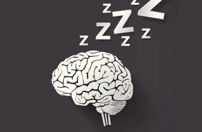 Tidur Siang bisa Tingkatkan Daya Ingat Anda