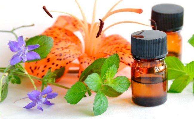 minyak esensial untuk payudara