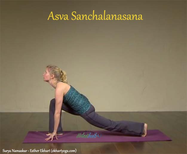 Asva Sanchalanasana - Surya Namaskar