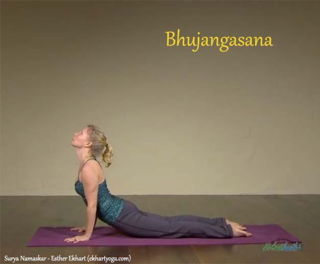 Bhujangasana - Surya Namaskar