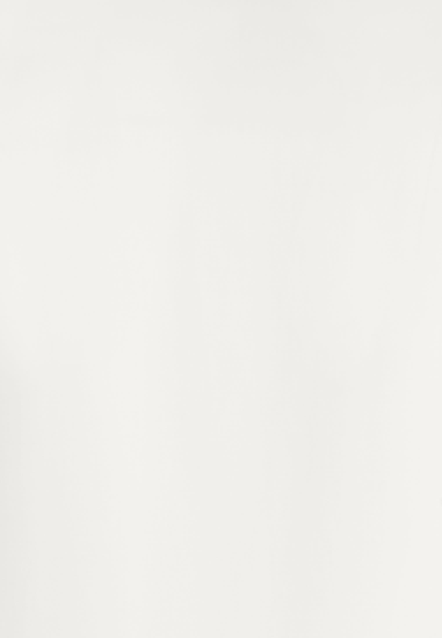 Satin Business Hemd in Slim Fit mit Kentkragen in Ecru    Jacques Britt Onlineshop